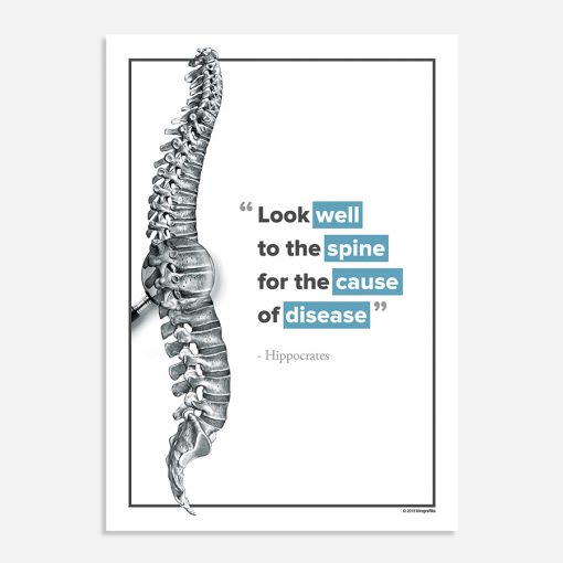look well to the spine