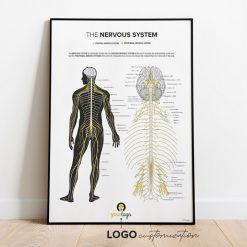 chiropractic poster logo