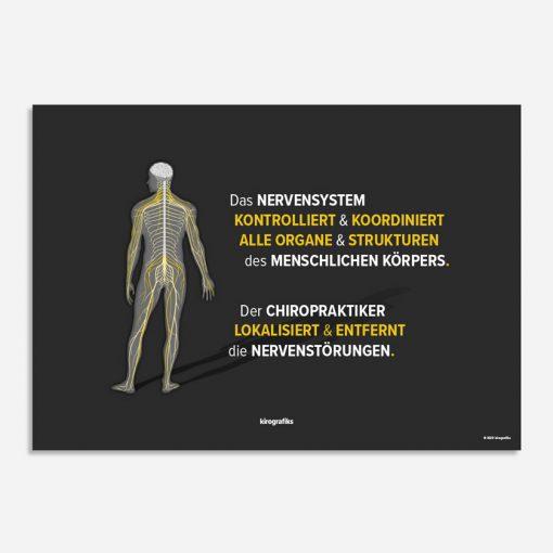 nervensystem chiropraktiker