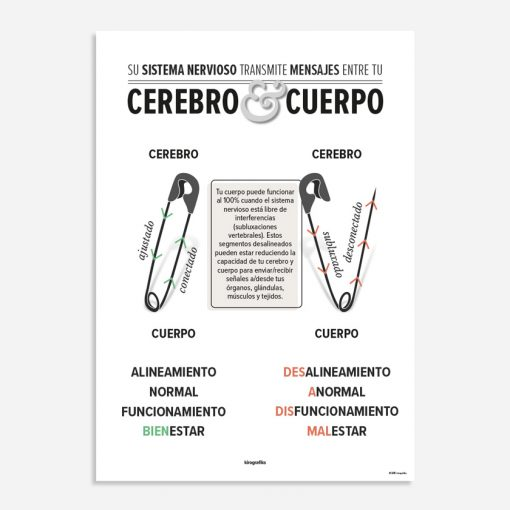 safety pin cycle spanish