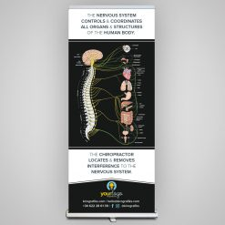 chiropractic roll-up
