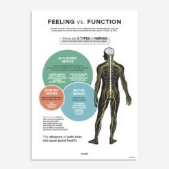 Feeling vs Function poster