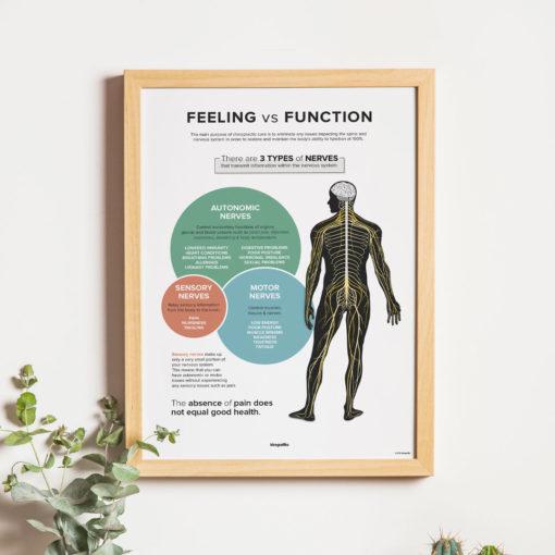 Feeling vs. Function