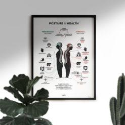 posture health chiropractic